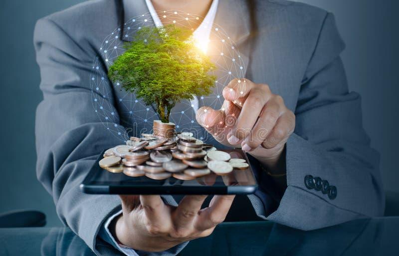 De boom van het handmuntstuk de boom groeit op de stapel Het Geld van de besparing voor de Toekomst Investeringsideeën en Bedrijf royalty-vrije stock fotografie