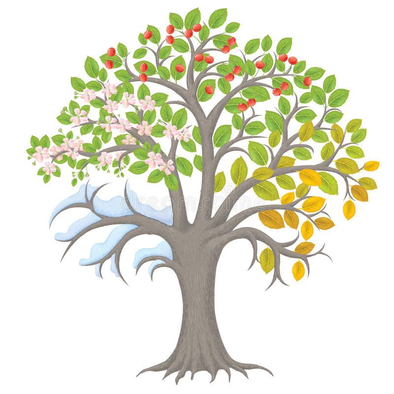 de boom van vier seizoenen vector illustratie illustratie bestaande uit symbool 44674393. Black Bedroom Furniture Sets. Home Design Ideas