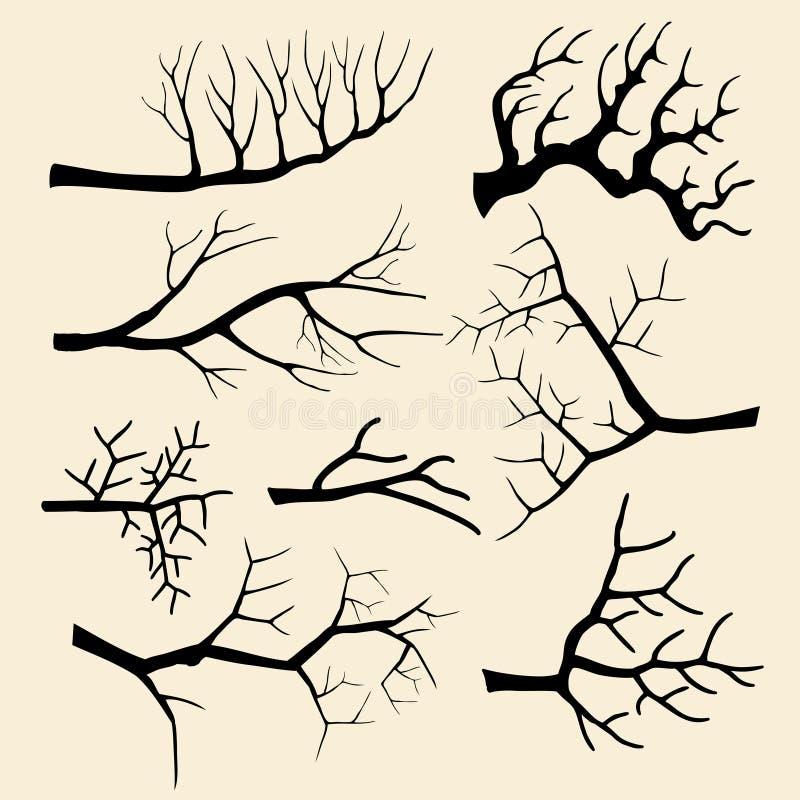 De boom vertakt zich vectorreeks ter beschikking getrokken stijl stock illustratie