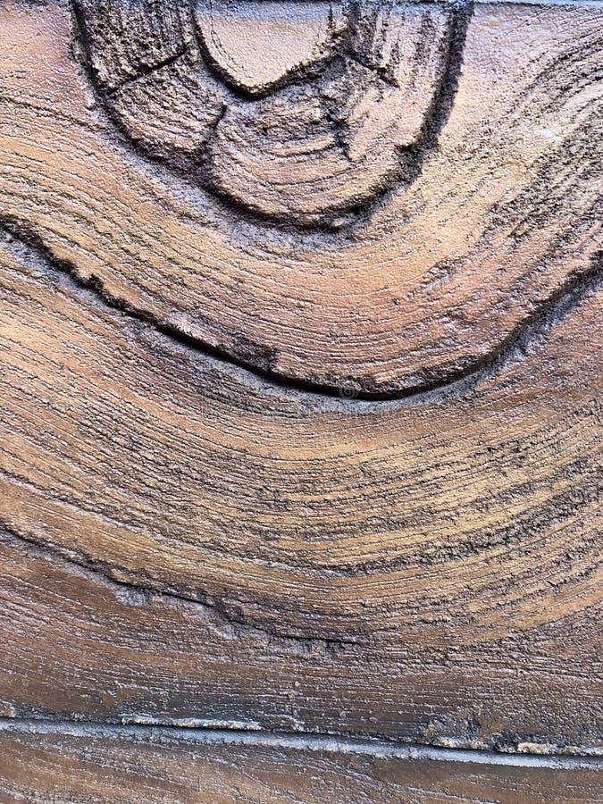 De boombeige van de textuur houten textuur stock foto's