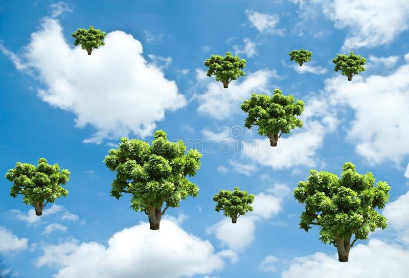 de boomgroei op hemel Het concept van de ecologie royalty-vrije stock afbeelding