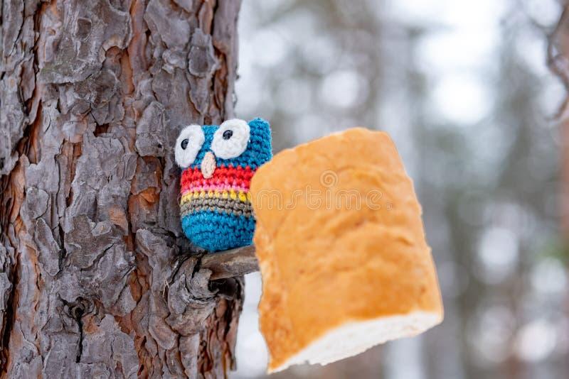 De boomstam van de boom is een pijnboomboom waarop een uil gebonden met zijn handen en een stuk van brood op een tak naast wordt  royalty-vrije stock afbeelding