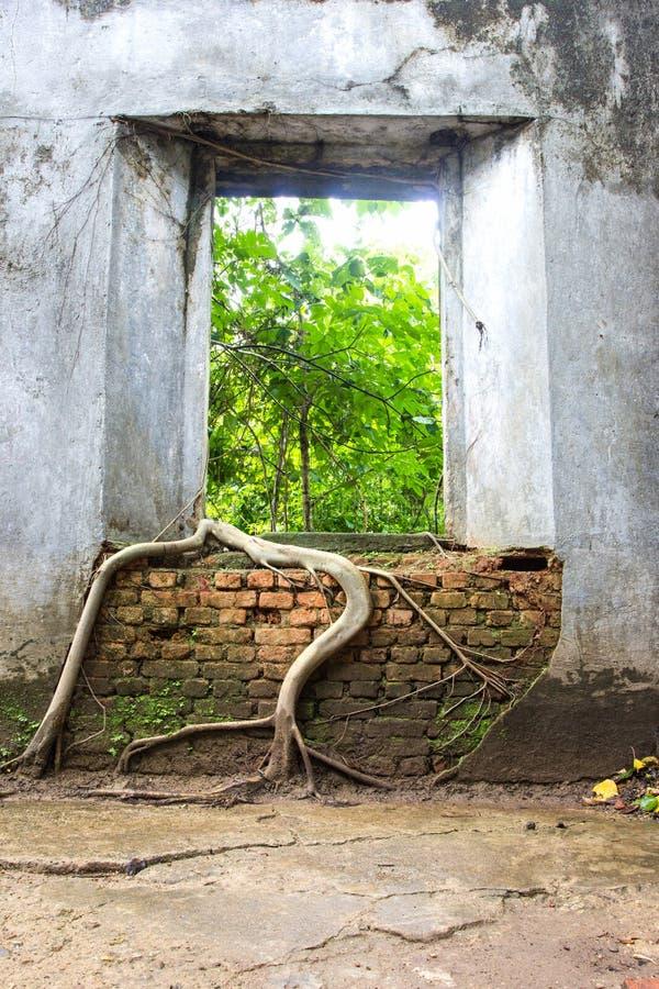 De boomwortels overweldigen oude tempelmuren, Sangkhlaburi royalty-vrije stock foto's