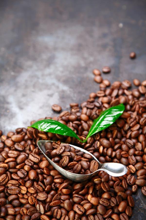 De boonachtergrond van de koffie over grijze textuur stock afbeeldingen