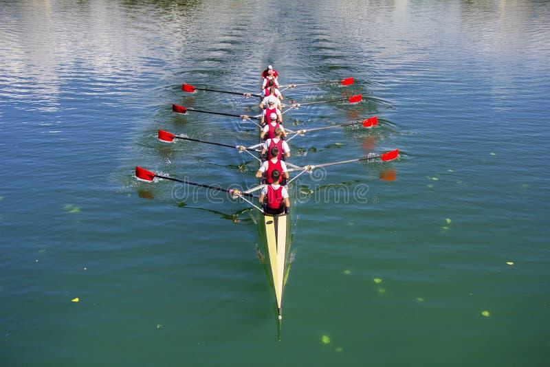 De boot coxed acht Roeiers het roeien stock afbeelding