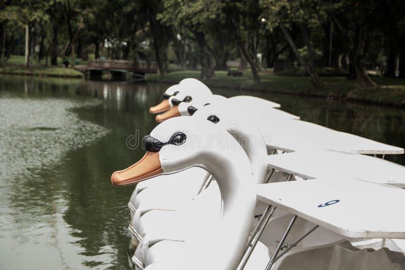 De boot van het close-uppedaal royalty-vrije stock foto