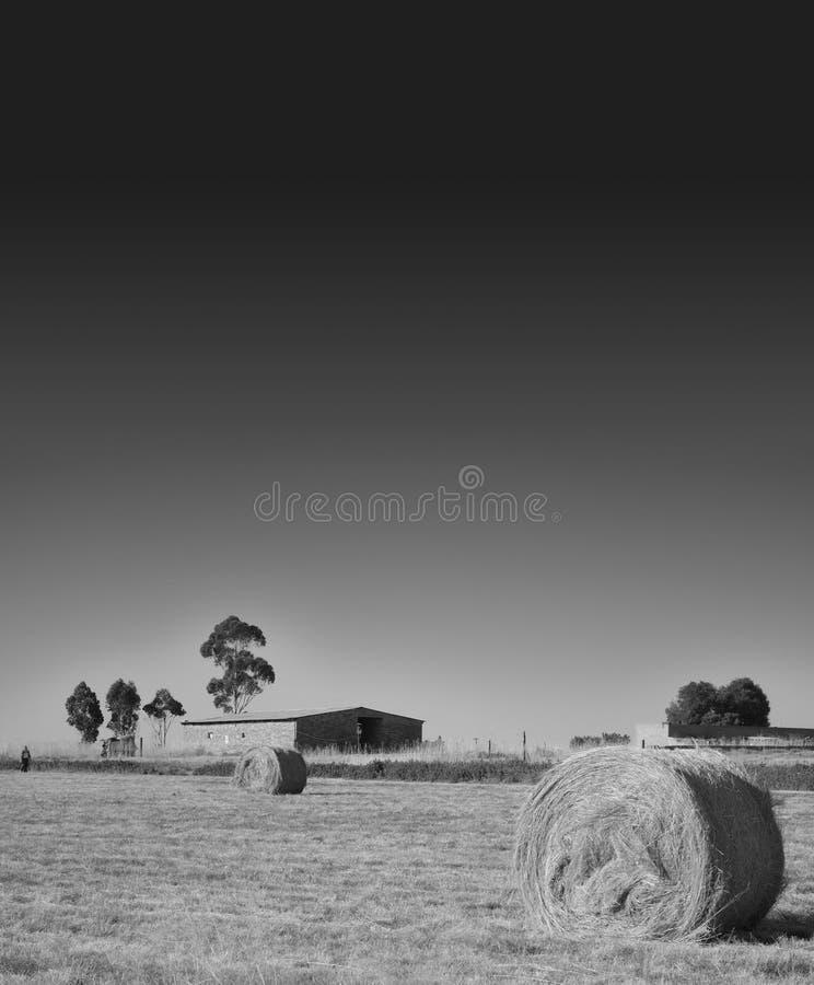 De borgtocht van het landbouwbedrijf en van het hooi op de prairie stock fotografie