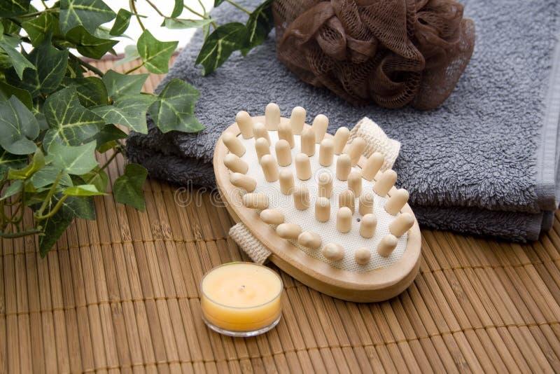 De borstel van de massage met spons stock foto