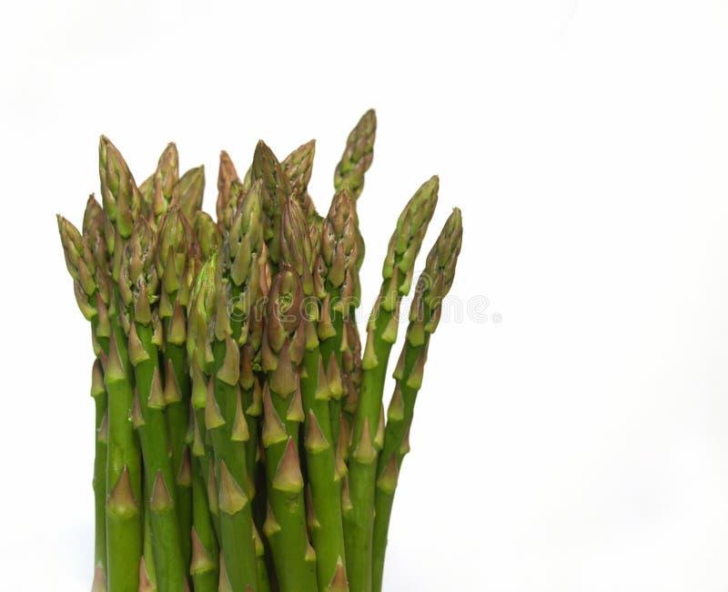 De bos van de asperge stock foto's