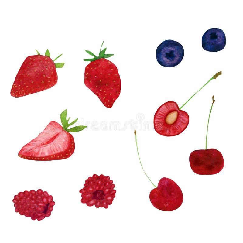 De bosbesseninzameling van de de zomer verse zoete strowberry framboos royalty-vrije illustratie