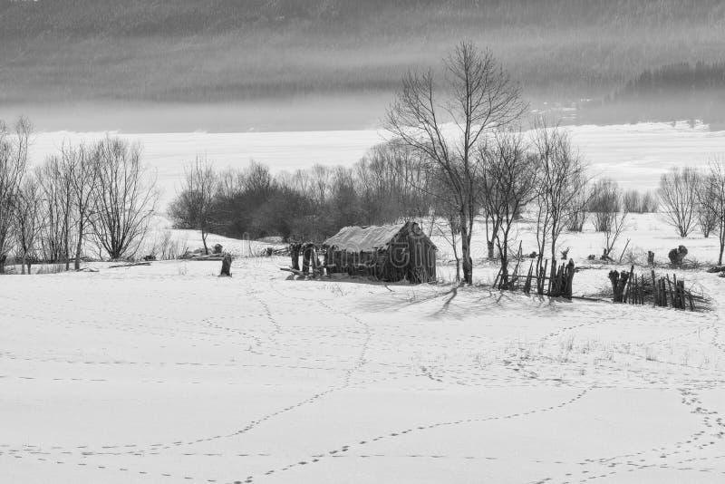 De bosscène van de winter Klein plattelandshuisje dichtbij de dam in een zonnige de winterdag Sneeuwfairytale in Bulgarije royalty-vrije stock fotografie