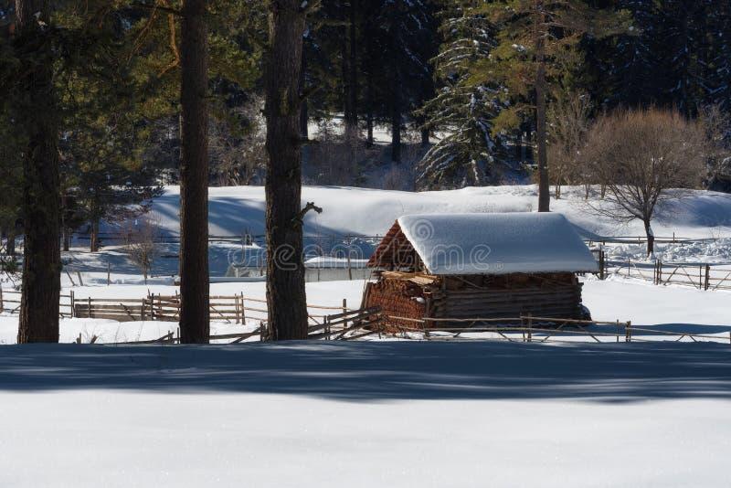 De bosscène van de winter Klein plattelandshuisje volgens een boomlijn in een zonnige de winterdag Sneeuwfairytale in Bulgarije royalty-vrije stock foto