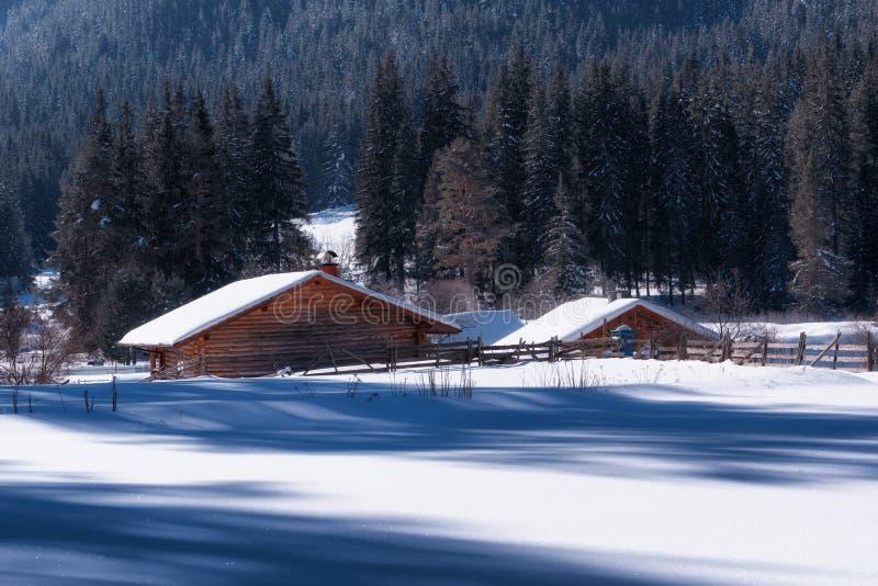 De bosscène van de winter Kleine plattelandshuisjes volgens een boomlijn in een zonnige de winterdag Sneeuwfairytale in Bulgarije stock afbeelding