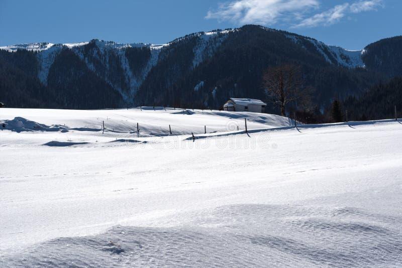 De bosscène van de winter Plattelandshuisje bij de berg in een zonnige de winterdag Sneeuwfairytale in Bulgarije royalty-vrije stock foto's