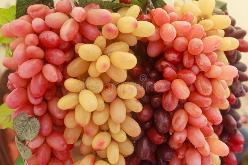 De bossen van druiven hangen kunstmatige close-up royalty-vrije stock foto's
