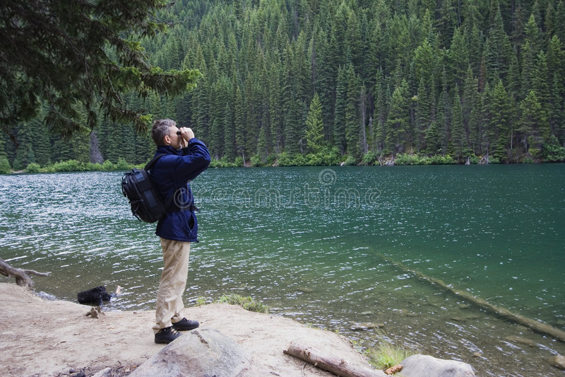 De boswachter die van het park dicht op het wild let stock foto