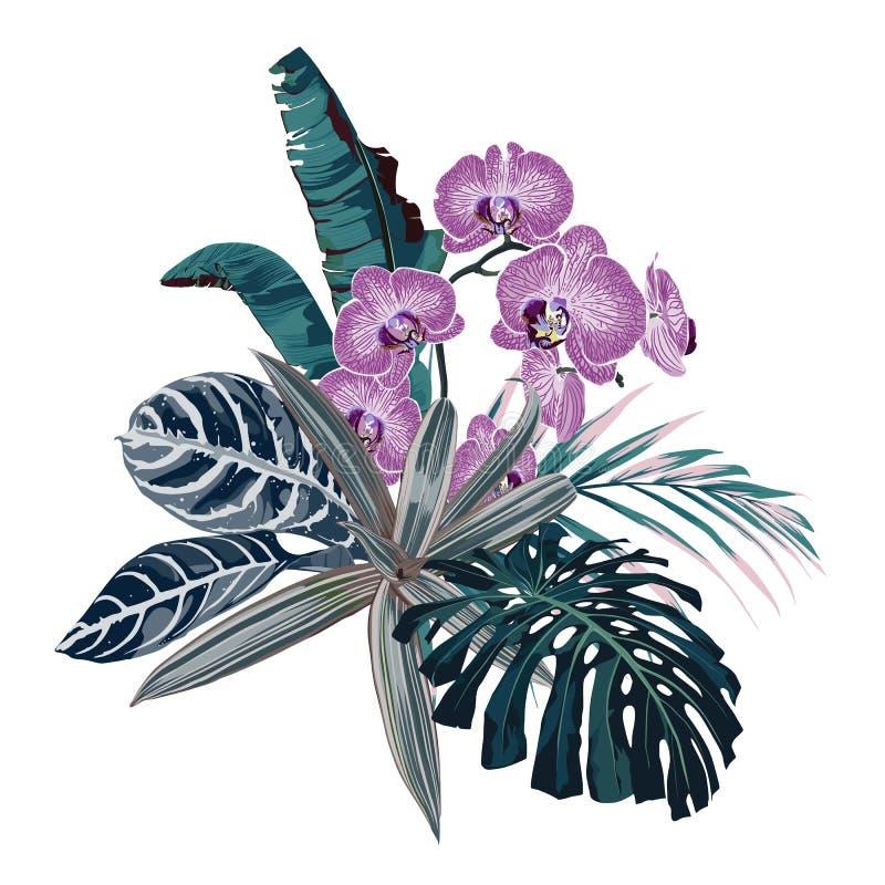 De botanische illustratie, mooi tropisch bloemenboeket, roze orchidee bloeit, palmbladen, uitheemse gewassen royalty-vrije illustratie