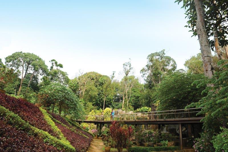 De Botanische Tuin van Malacca royalty-vrije stock fotografie