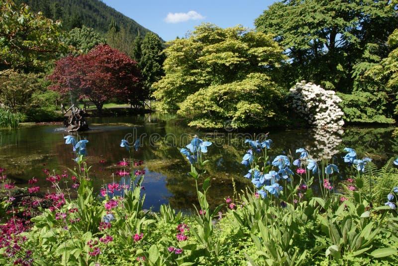 De Botanische Tuinen van Benmore stock fotografie