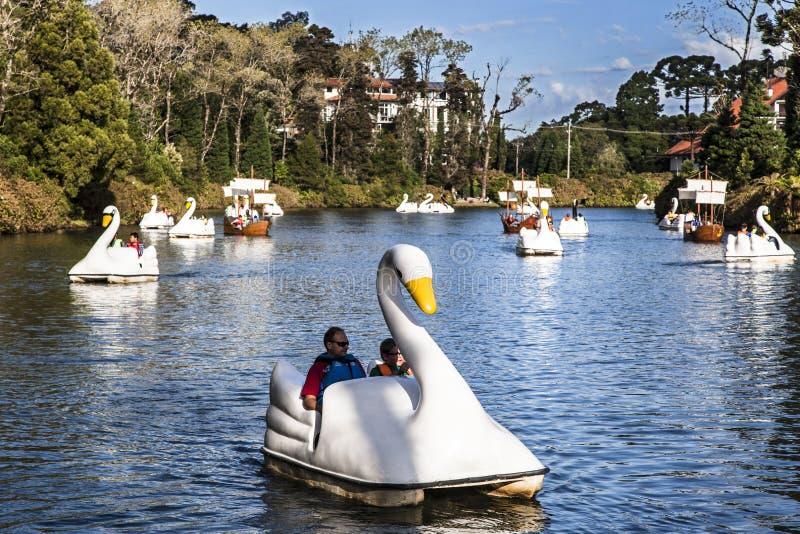 De Boten van de zwaan op Donker Meer Gramado Brazilië royalty-vrije stock fotografie