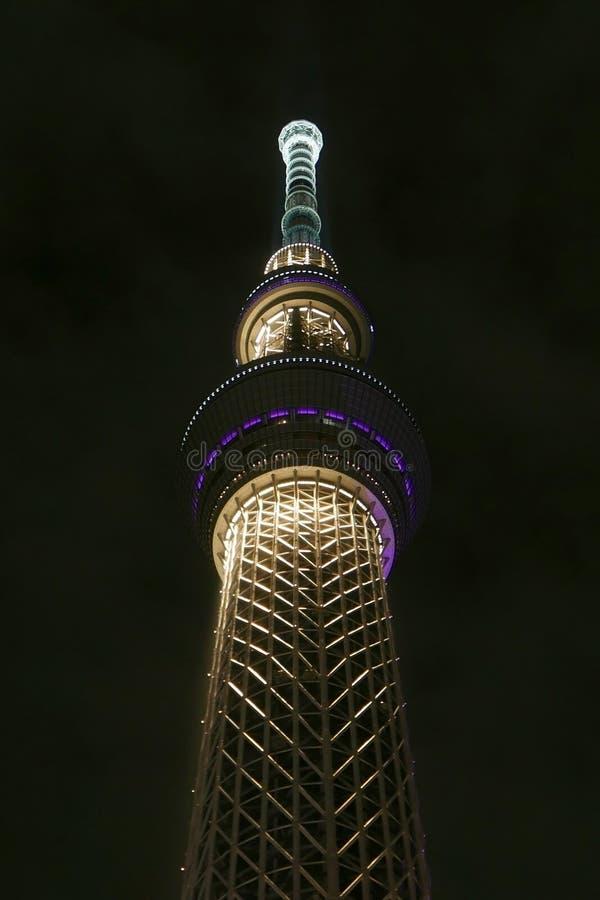 De bouw van de skytreetoren van Japan Tokyo bij nacht stock afbeelding