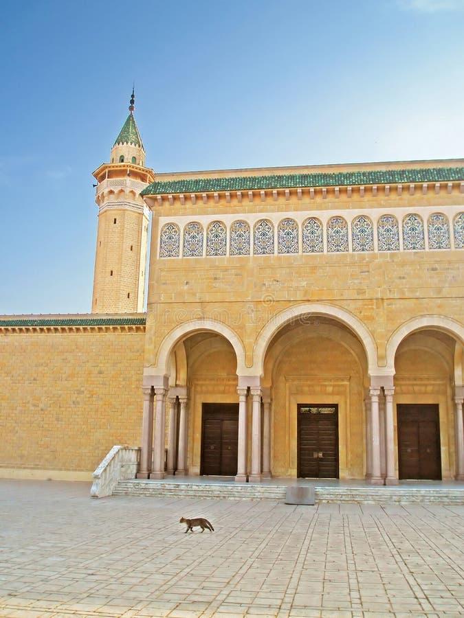 De bouw van een moskee, Monastir-stad, Tunesië stock foto's