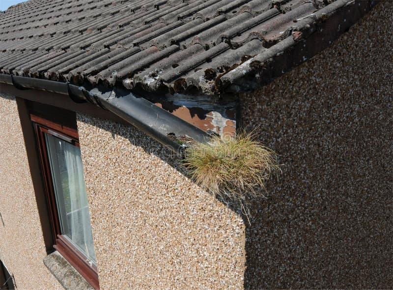 De Bouw van het huisonderhoud het Afvoerkanaalschade van de Reparatie Gebroken Goot stock fotografie