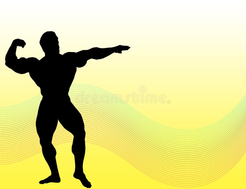 De Bouw van het lichaam vector illustratie