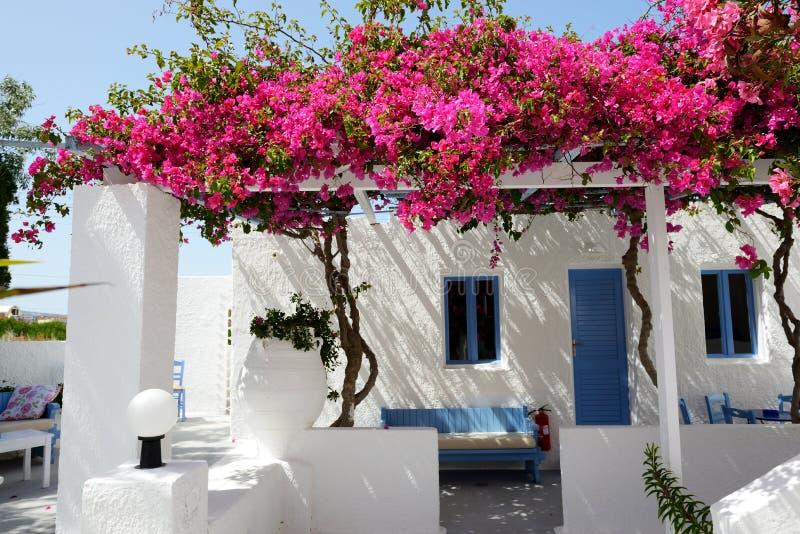 De bouw van hotel in traditionele Griekse stijl met Bougainvillea stock fotografie