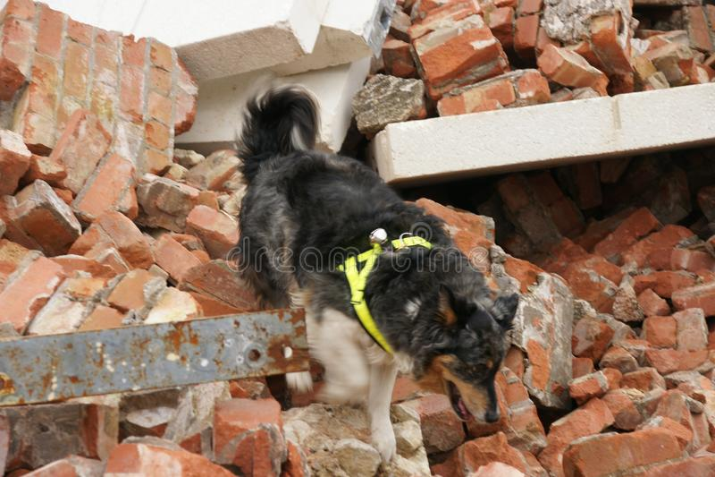 De bouwinstorting, rampenstreek royalty-vrije stock foto's