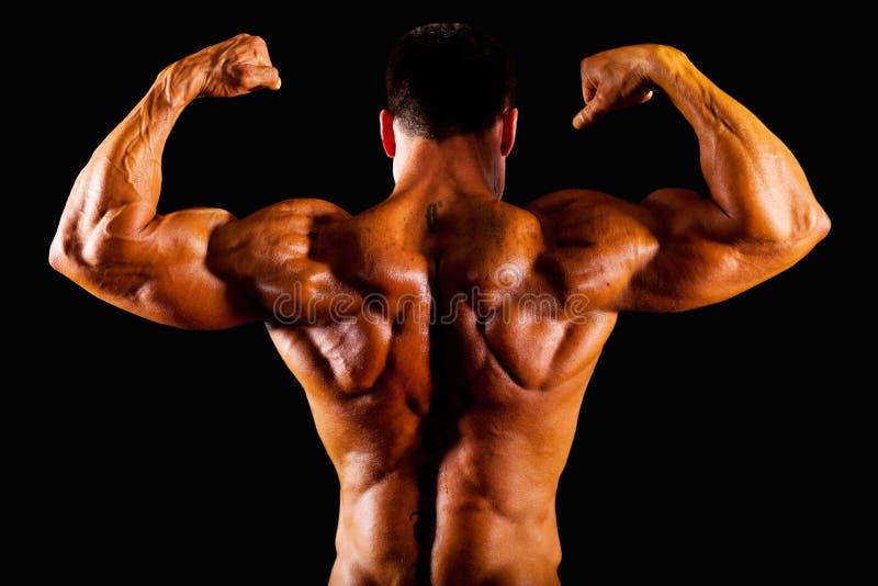 De bovenkant van de bodybuilder royalty-vrije stock fotografie