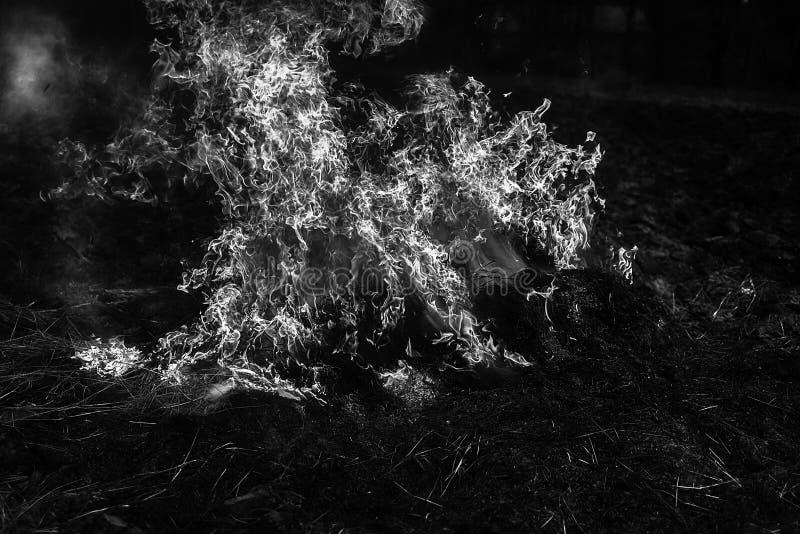 De brand brandt strogebied na oogst royalty-vrije stock afbeeldingen