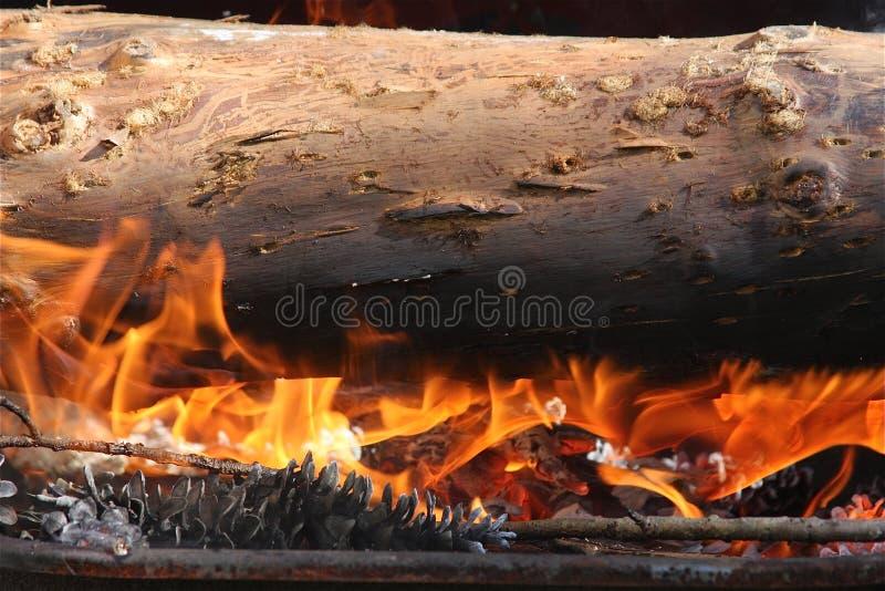 De Brand van het logboek stock afbeelding