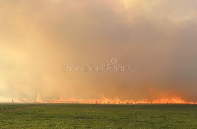 De brand van het stoppelveld royalty-vrije stock fotografie