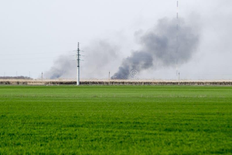 De brand is ver weg op het gebied Clubs van rook van het branden van riet en riet stock afbeelding