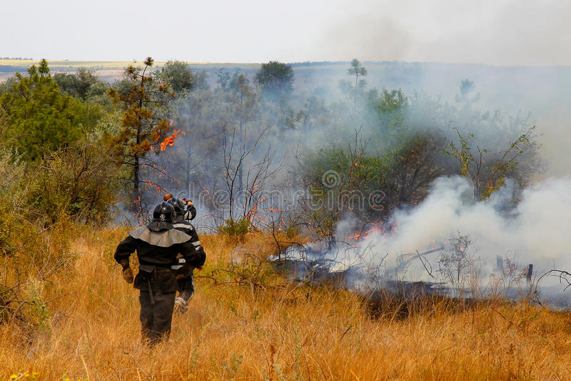 De brandbestrijders doven een brand in het hout stock foto