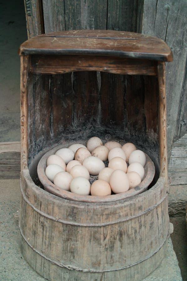 De brandende eieren van de koolstof royalty-vrije stock foto's