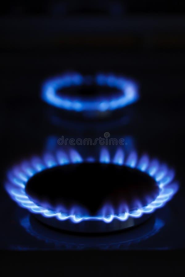 De brandende ringen van het gaskooktoestel stock foto