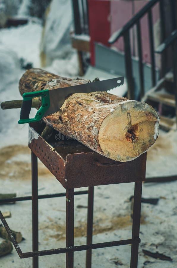 De brandhout en zaag van het besnoeiingslogboek Vernieuwbaar middel van een energie Gezaagde Boomboomstam stock afbeelding