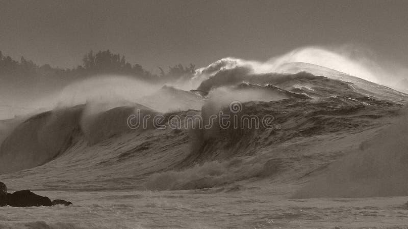 De branding van het monsteronweer liquideert Waimea-baai stock fotografie