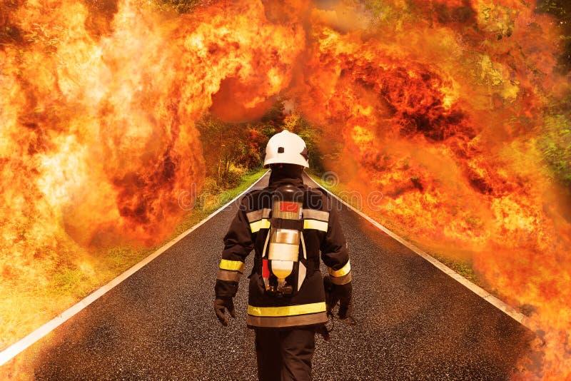 De brandvechter gaat naar het bos voor het vechten met brand, het Teamwerk en verrichting met brandgeval en de opdracht zou succe stock fotografie
