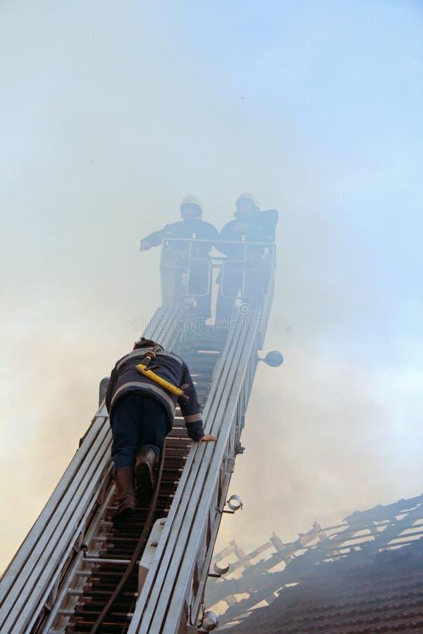 De brandweerlieden van het groepswerk royalty-vrije stock foto