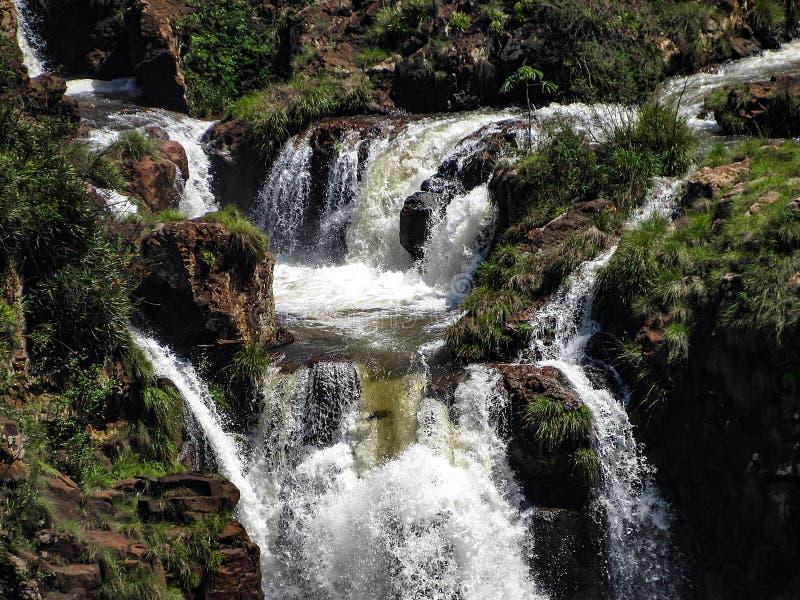 De Braziliaanse Kant van Iguazu valt, in Foz doe Iguacu, Brazilië stock foto