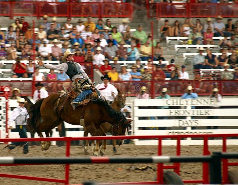 De Breker van het Wild paard van de Dagen van de grens royalty-vrije stock afbeelding
