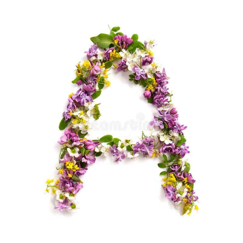 """De brief """"AÂ"""" van diverse natuurlijke kleine bloemen wordt gemaakt die stock foto"""