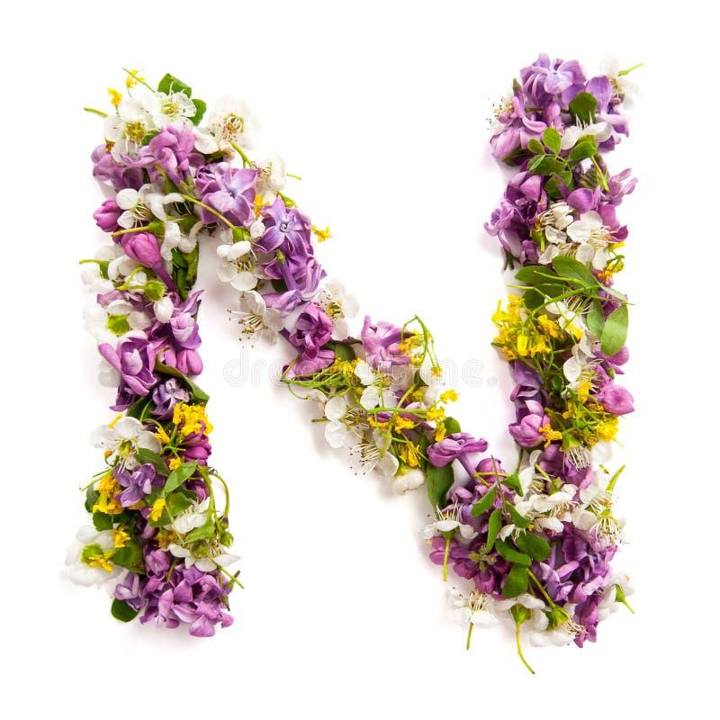 """De brief """"NÂ"""" van diverse natuurlijke kleine bloemen wordt gemaakt die royalty-vrije stock afbeeldingen"""