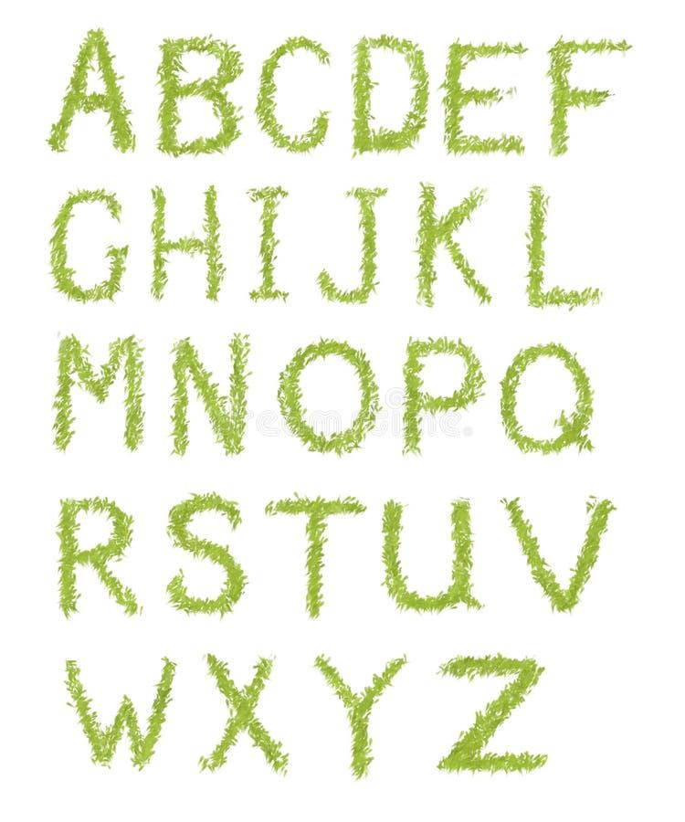 De brieven van het alfabet van groen gras dat op wit wordt geïsoleerdk vector illustratie