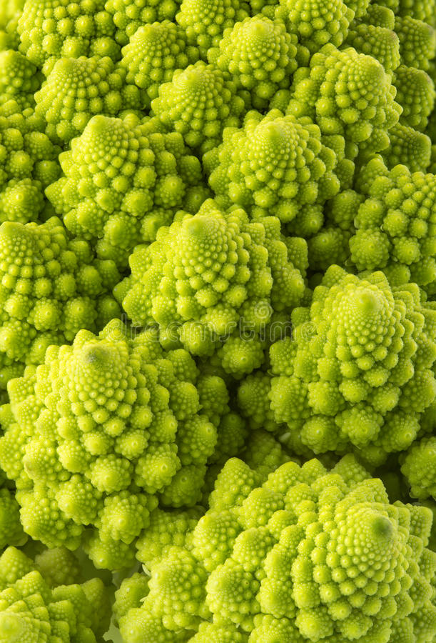 De broccoli van Romanesco royalty-vrije stock foto's