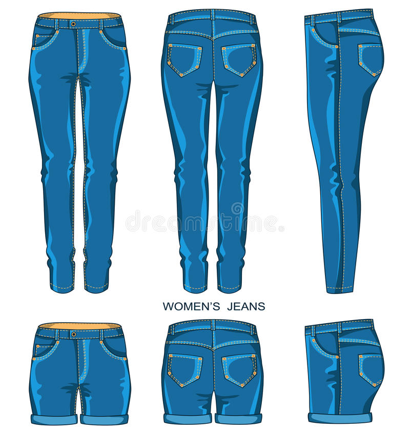 De broek en de borrels van vrouwenjeans stock illustratie