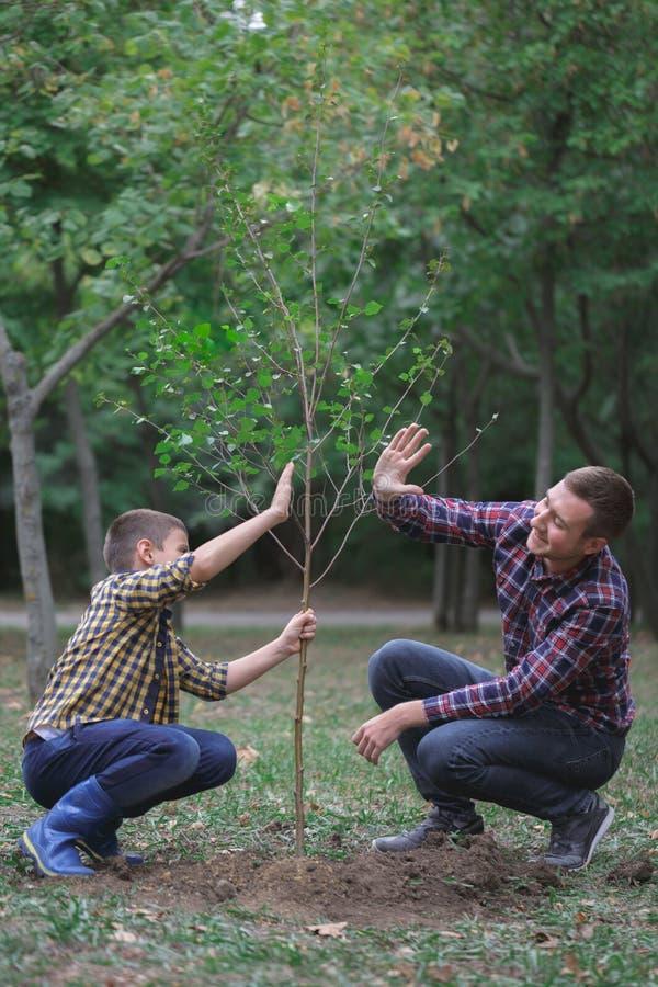 De broers planten een boom in de tuin Het familiewerk Een geplante boom in het bos royalty-vrije stock foto's